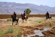 اطلاعیه برگزاری دومین مسابقه سواری استقامت هیأت سوارکاری استان اصفهان در سال 95