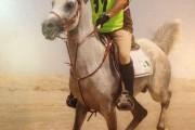 آقای مسعود محکم کار قهرمان مسابقات کشوری سواری استقامت سرداران شهید آذربایجان