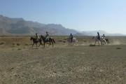 نتایج سومین مسابقه سواری استقامت هیأت سوارکاری استان اصفهان در سال 95
