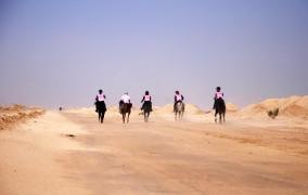 نتایج چهارمین مسابقه سواری استقامت هیأت سوارکاری استان اصفهان در سال 95