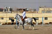 نتایج اولين دوره مسابقه ورزشى اسبهاى عرب هیأت سوارکاری استان اصفهان در سال 95