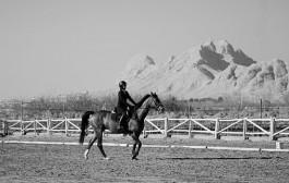 نتایج چهارمین مسابقه درساژ هیأت سوارکاری استان اصفهان در سال 95
